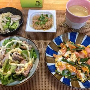 魚肉ソーセージ入りニラ玉、鯖水煮とレタスのマヨサラダ、合体煮、納豆、