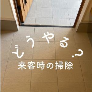 来客がある時の掃除(短縮バージョン)を紹介します。