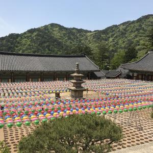 2019年春韓国大邱旅行三日目(1)。伽耶山海印山に参拝。八萬大蔵経の版木