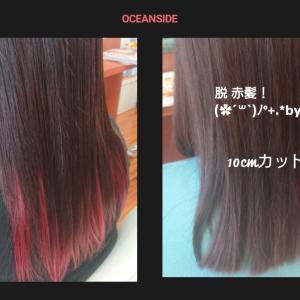 脱!赤髪!