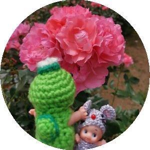 薔薇とあじさい