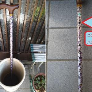 杖の伸縮調整用穴にハチ