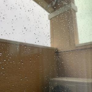 8月24日火曜日。今朝の台所と今日のお天気。。