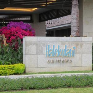 オリエンタルヒルズ沖縄、ハレクラニ沖縄、ホテル日航アリビラ
