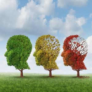難聴の人は、脳の委縮速度が早い。
