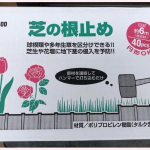 平成最後の庭いじり☆