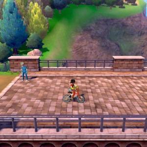 【ポケモン剣・盾】C級ポケモントレーナーの剣・盾その7 バウタウンへの道のり