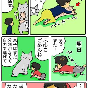 ネコつぶす幼児