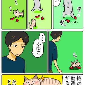 ネコの嗅覚おかしくない?