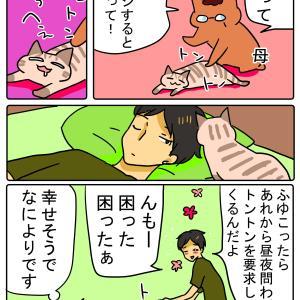 ネコをマッサージ