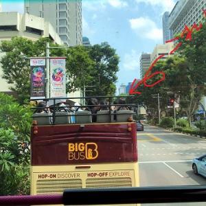 シンガポール旅行でやってはいけない事