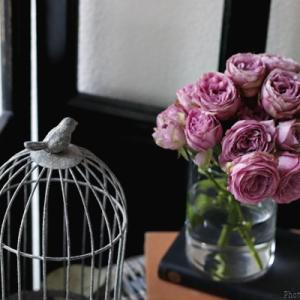 【掲載情報】バラ好きさん必見!花時間petit「バラを楽しむ本」発売