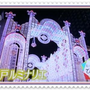 今日から「神戸ルミナリエ」&我が家のクリスマス
