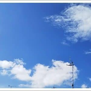 台風一過 & 敬老の日祝い品 & 岸和田だんじり祭り
