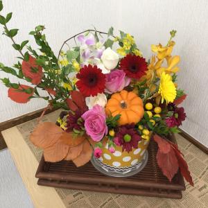 """パンプキンを使ってハロウィンアレンジ&リブログ""""多肉植物を取り入れたアレンジ~"""""""