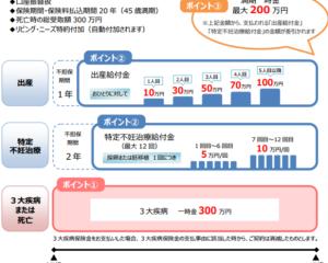日本生命保険(ニッセイ)の業界初の特定不妊治療保険のまとめ