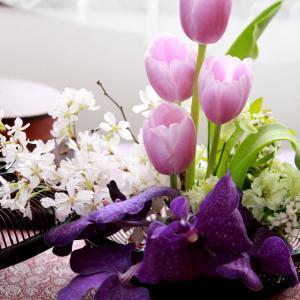 わっぱでお花見ランチコーディネート