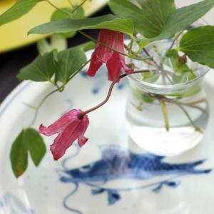 再投稿!8月のご案内~日本茶&和菓子レッスン