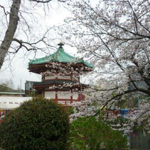 第100回 秋葉原仕入れツアーを開催します。