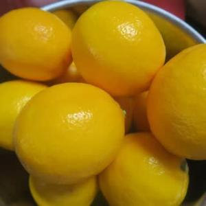 レモン仕事