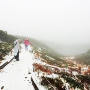旭岳の山麓駅からロープウェイに乗り、 姿見駅に着いたら、この雪景色。大雪山系旭岳&青い池バスツアー