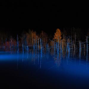 湖面のリフレクションに加えて紅葉も美しく、雪のライトアップよりも見ごたえがあるかもしれませんよ‼