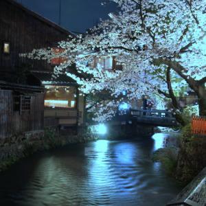 京都の桜⑦ 桜越しに三味の音が・・・祇園白川 巽橋付近