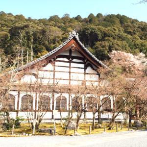 階段紀行・西日本 京都編① 龍がうねりながら上下する永観堂の階段。苔むした味わい石段も。