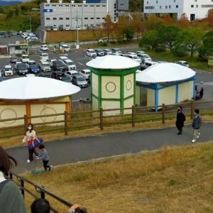 経験540:大きなトンボの遊具が珍しくて楽しい!大阪岸和田市「蜻蛉池公園」レビュー!