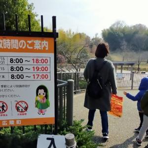 経験565:大型遊具と無料で遊べる「ソリ滑り」がお得で楽しすぎる!竹取公園レビュー!