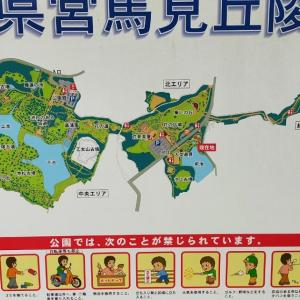 経験565:広大な敷地面積を誇る「馬見丘陵公園」の遊具エリアレビュー!