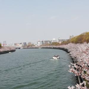 経験412:今年も満開!大阪「桜之宮公園」でお花見レビュー!お店もいっぱいで楽しい!