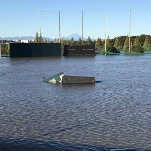 【悲報】ヤクルト二軍球場が水没
