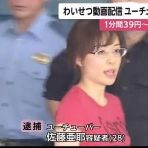 【画像】有名女YouTuber、わいせつ動画配信して逮捕 wwwwww