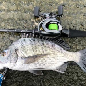 確実に釣れるルアーと釣法に辿り着いた気がする
