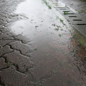 今年のマイブームは雨天〜雨活してます。