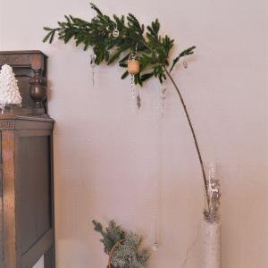 今年のクリスマスツリーとむふふ