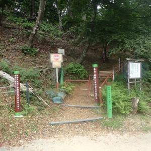 池田山~高天神トレイルラン