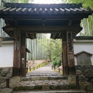 今月も弾丸日帰りで京都の地蔵院と等持院に行って来た(* ̄▽ ̄)ノ~~ ♪