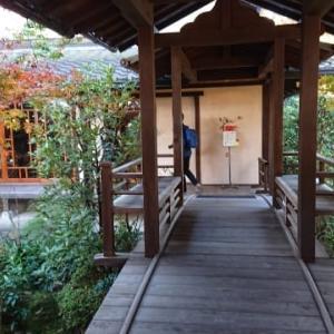 「カフェ 椛(もみじ)」〜安楽寺の境内にある古民家風の素敵なカフェ✨