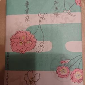 「さくら餅」〜赤福・四月の朔日餅🌸