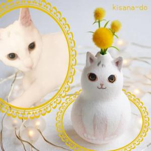 ひょうたんねこの白猫さん