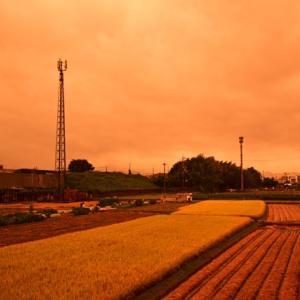 橙色に染まった空