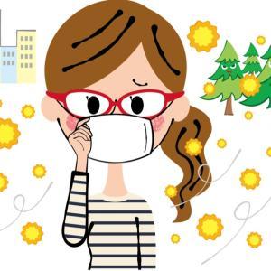 今日は花粉がよく飛んでいるようです