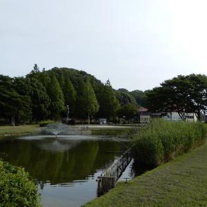 朝から歩崎公園へ、久しぶりのフライト。