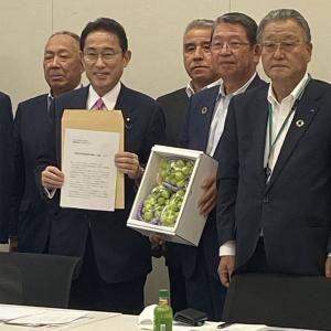 岸田氏、新自由主義転換路線を強調「規制改革を現場目線で検証」