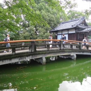 京都 観智院&東寺界隈(八条通り沿い)を歩いた令和元年の夏の日