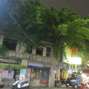 夜の台北林森北路散歩!ガジュマル生い茂る台北のドリーミングな街角
