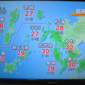 島原半島勢の結果!イブニング長崎、島原のローカルテレビ番組などを楽しむ