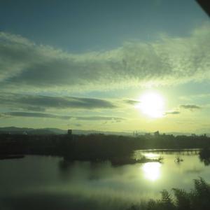 東海道新幹線&山陽新幹線の車窓 こだまレイルスターの写真もあり